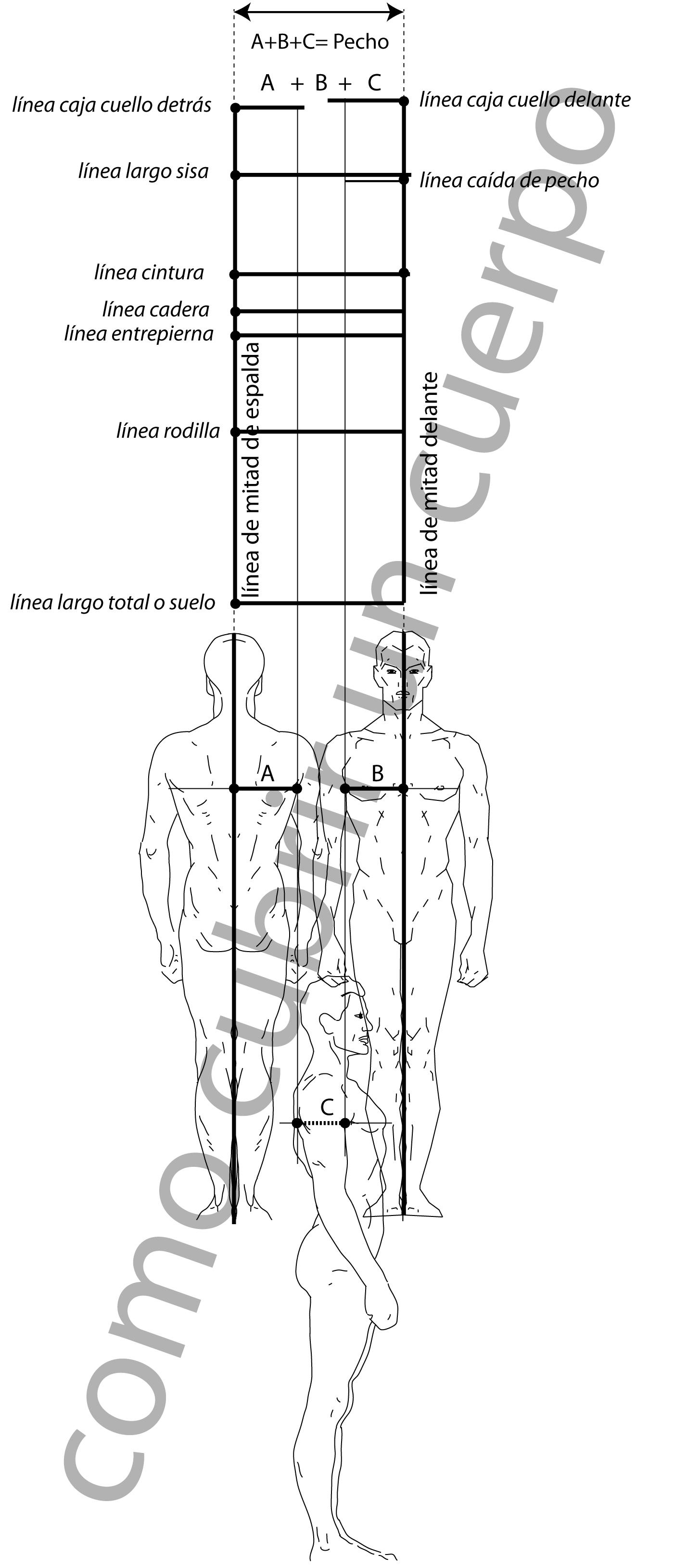 Contorno de pecho masculino | Cómo cubrir un cuerpo