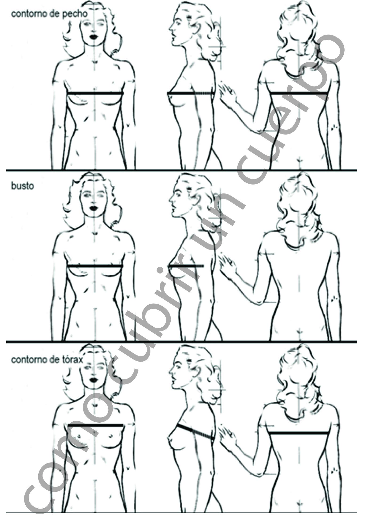 Medidas (5) El contorno de pecho femenino. | Cómo cubrir un cuerpo