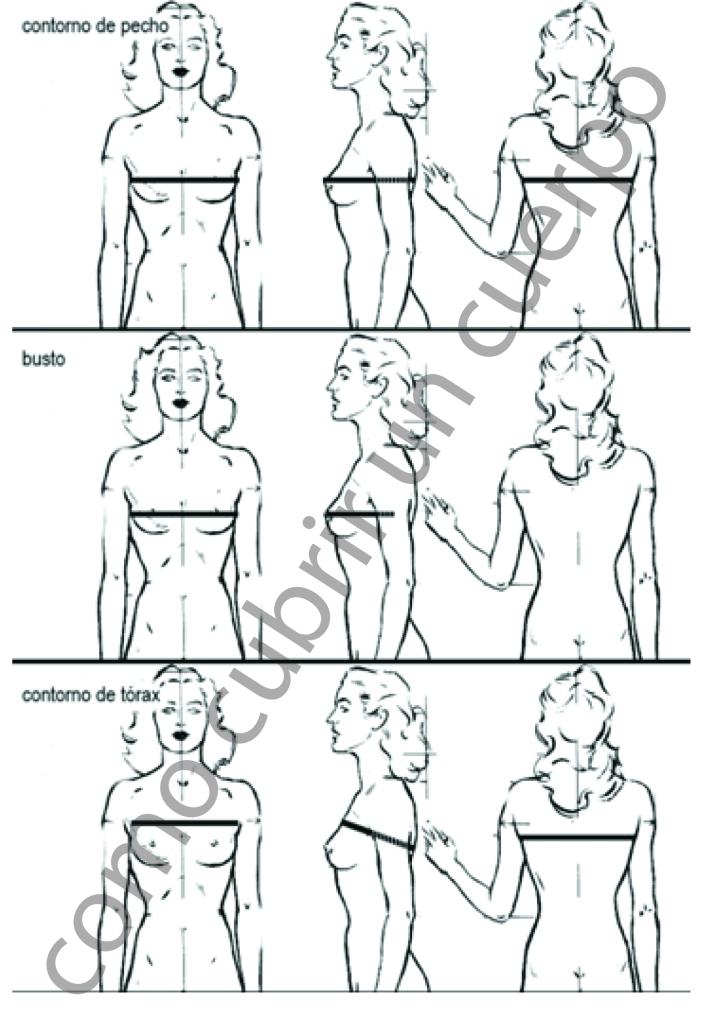 toma medidas mujer